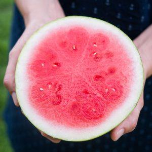 vjk-mini-melon